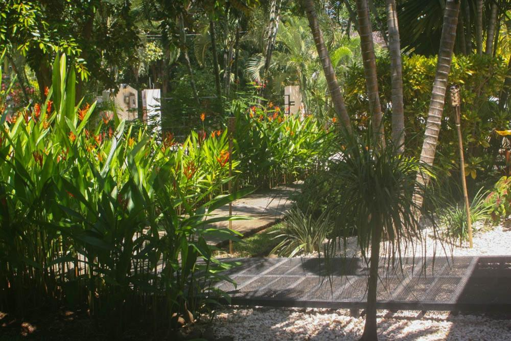 Bed And Breakfasts In Paquera Puntarenas