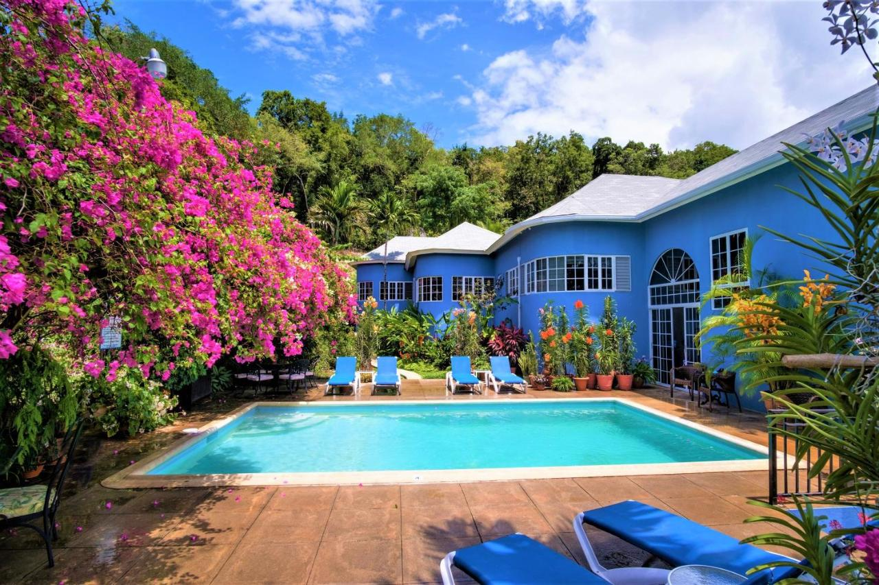 Bed And Breakfasts In Oracabessa Saint Mary
