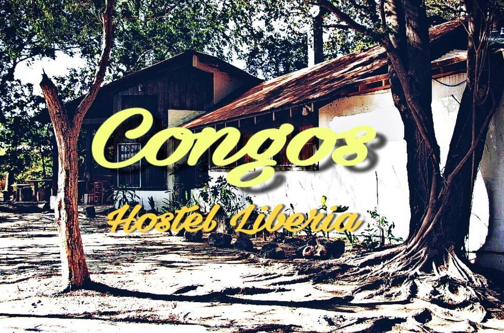 Hostels In Pital Guanacaste
