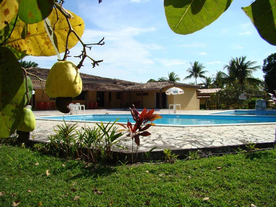Guest Houses In Maragogipinho Bahia