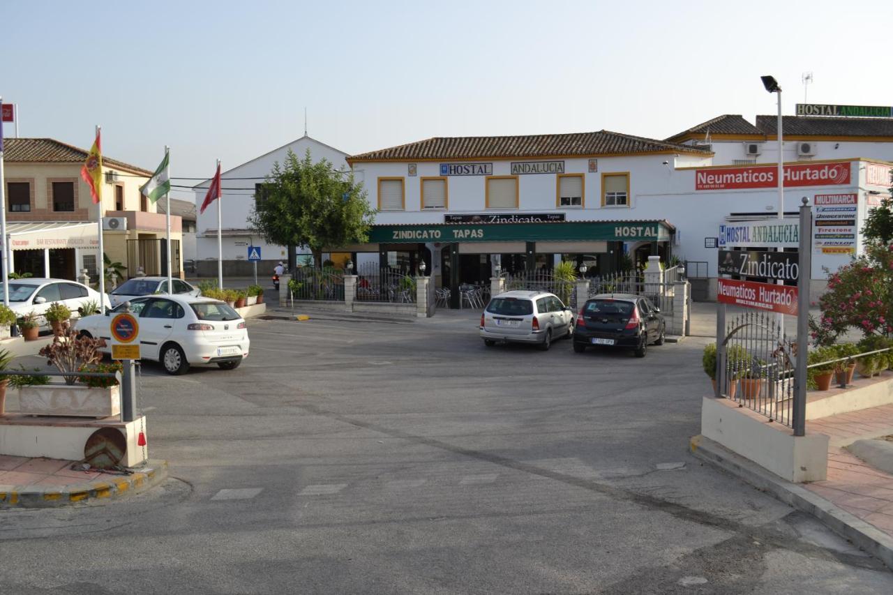 Guest Houses In Caserío Los Majadales Andalucía