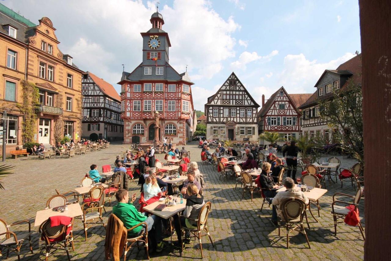 Apartment Ferienwohnung Starkenburgweg, Heppenheim an der ...