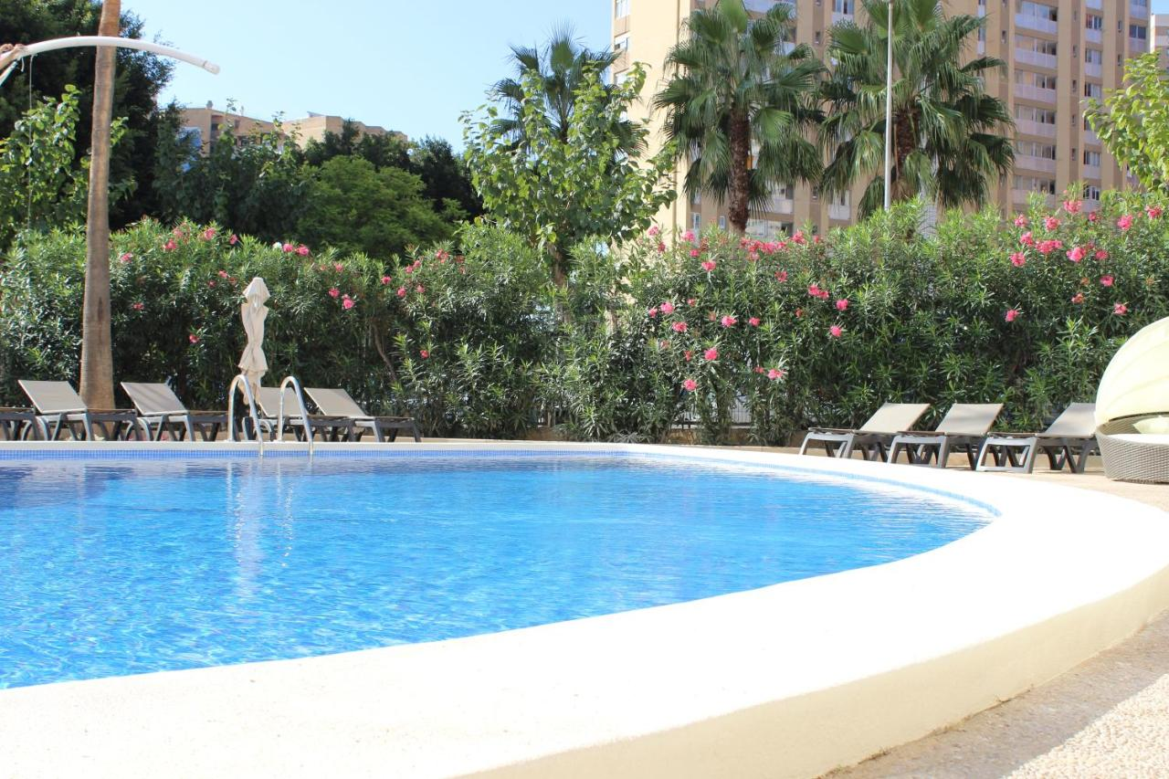 Flamingo beach resort benidorm reviews