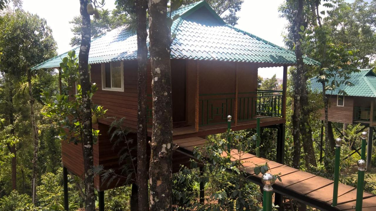 Best _Tree_Houses_in_Kerala_5