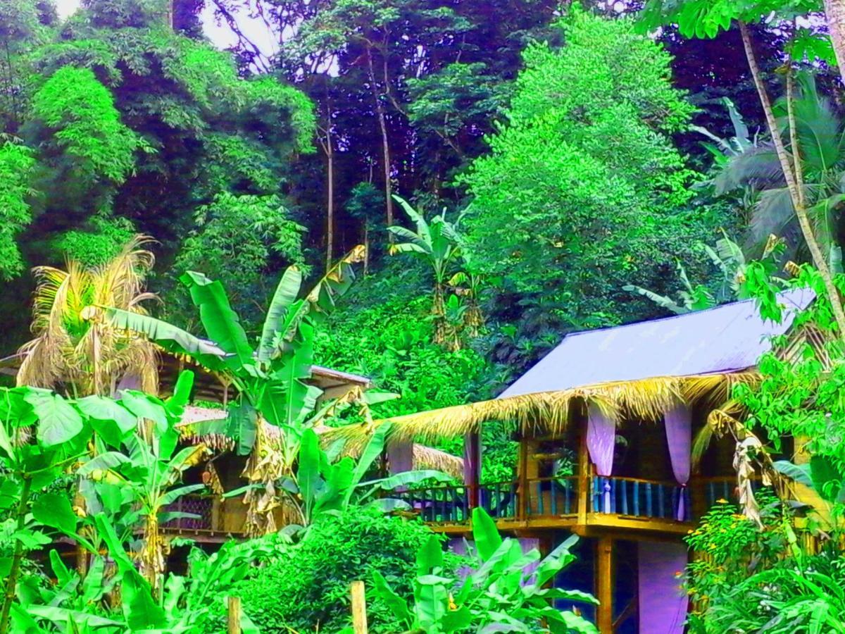 Hostels In Manzanillo Limon