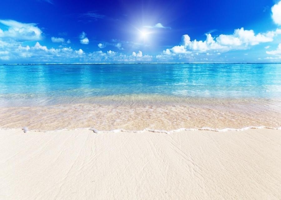 apartment siesta key beach location location location siesta key