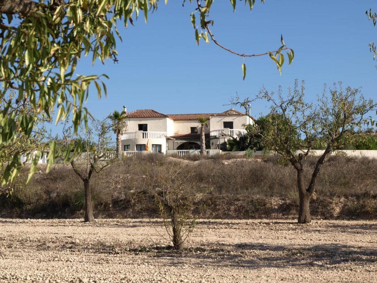 Bed And Breakfasts In San Felipe De Neri Valencia Community