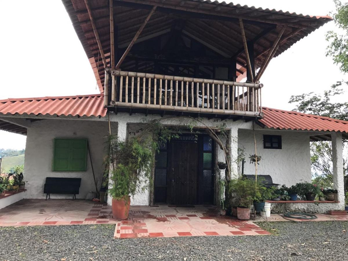 Hostels In Ulloa