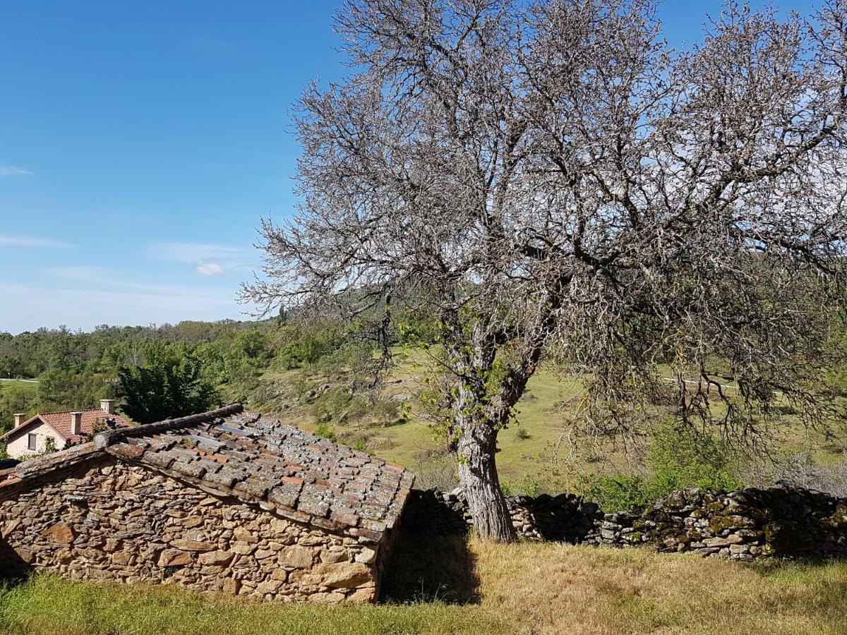 Hotels In Valdepeñas De La Sierra Castilla-la Mancha