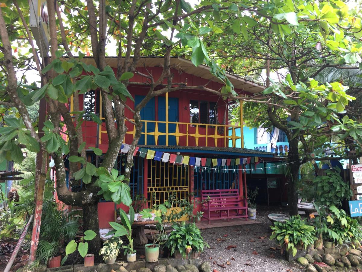 Hostels In Pedregoso San José