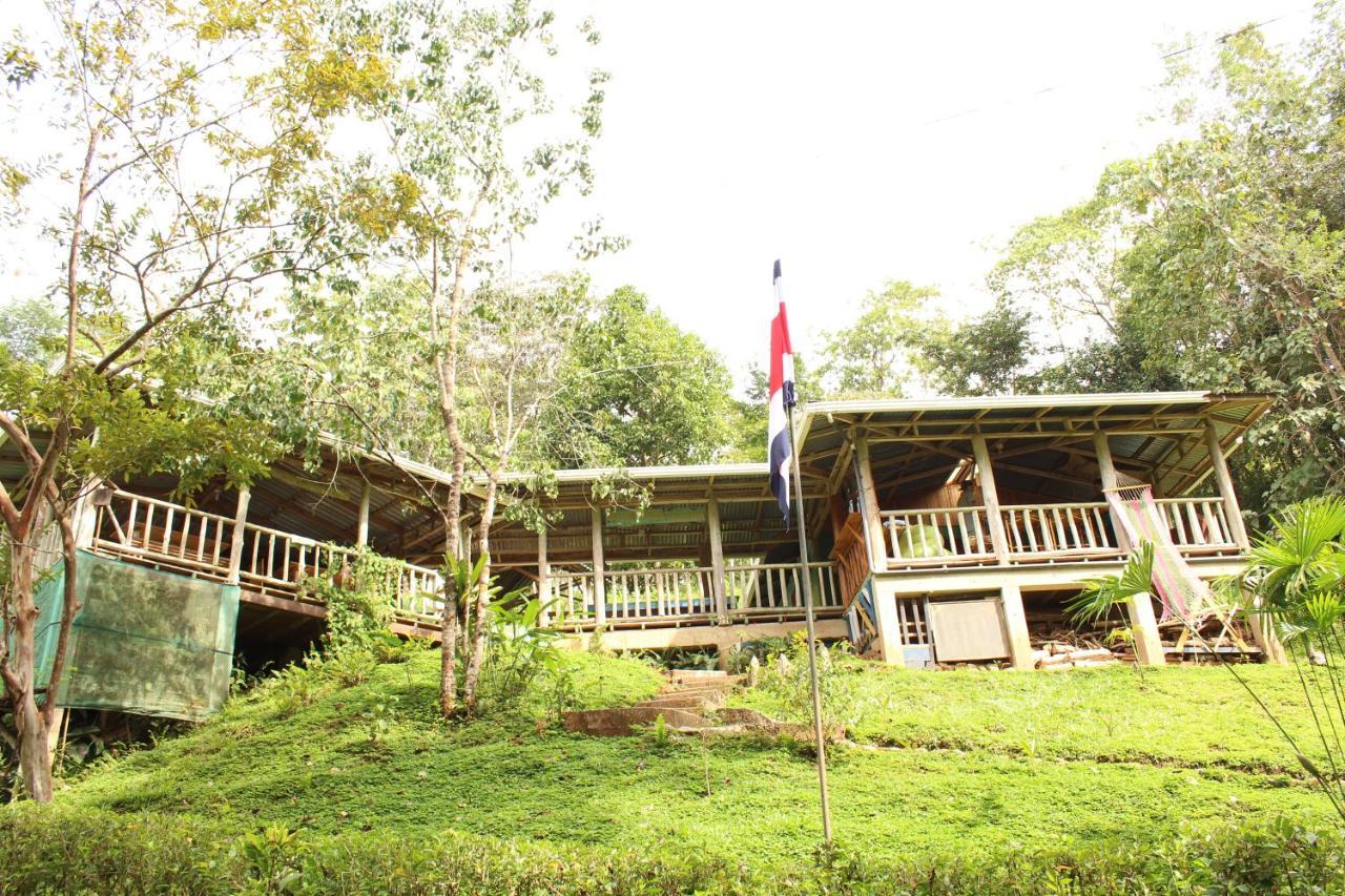 Hostels In Rivas San José