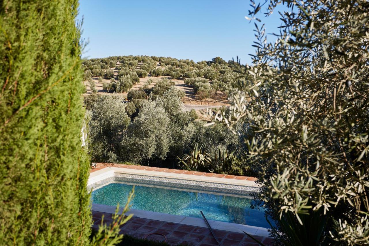 Bed And Breakfasts In La Carrera De La Viña Andalucía