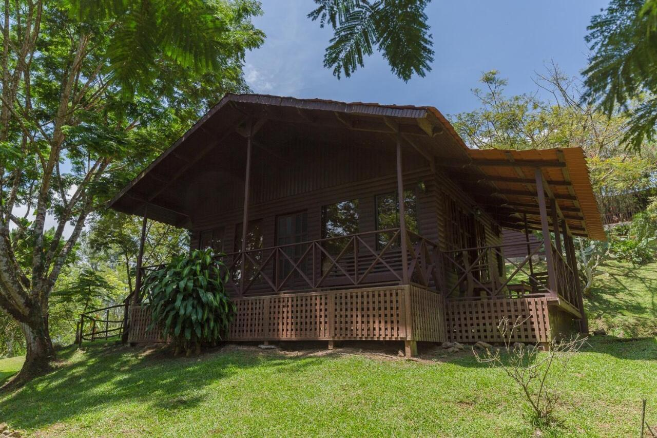 Bed And Breakfasts In Bajo Tigre Limon