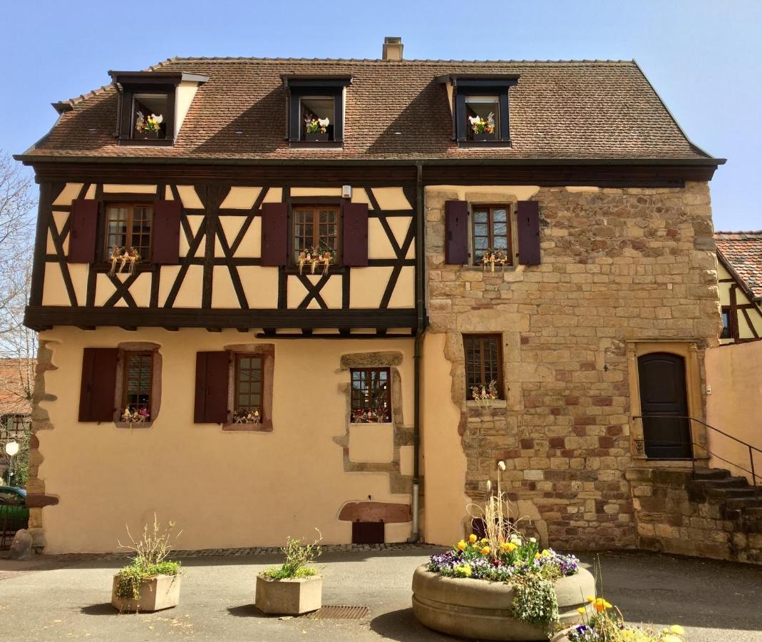 Mulhouse ville ariane dating