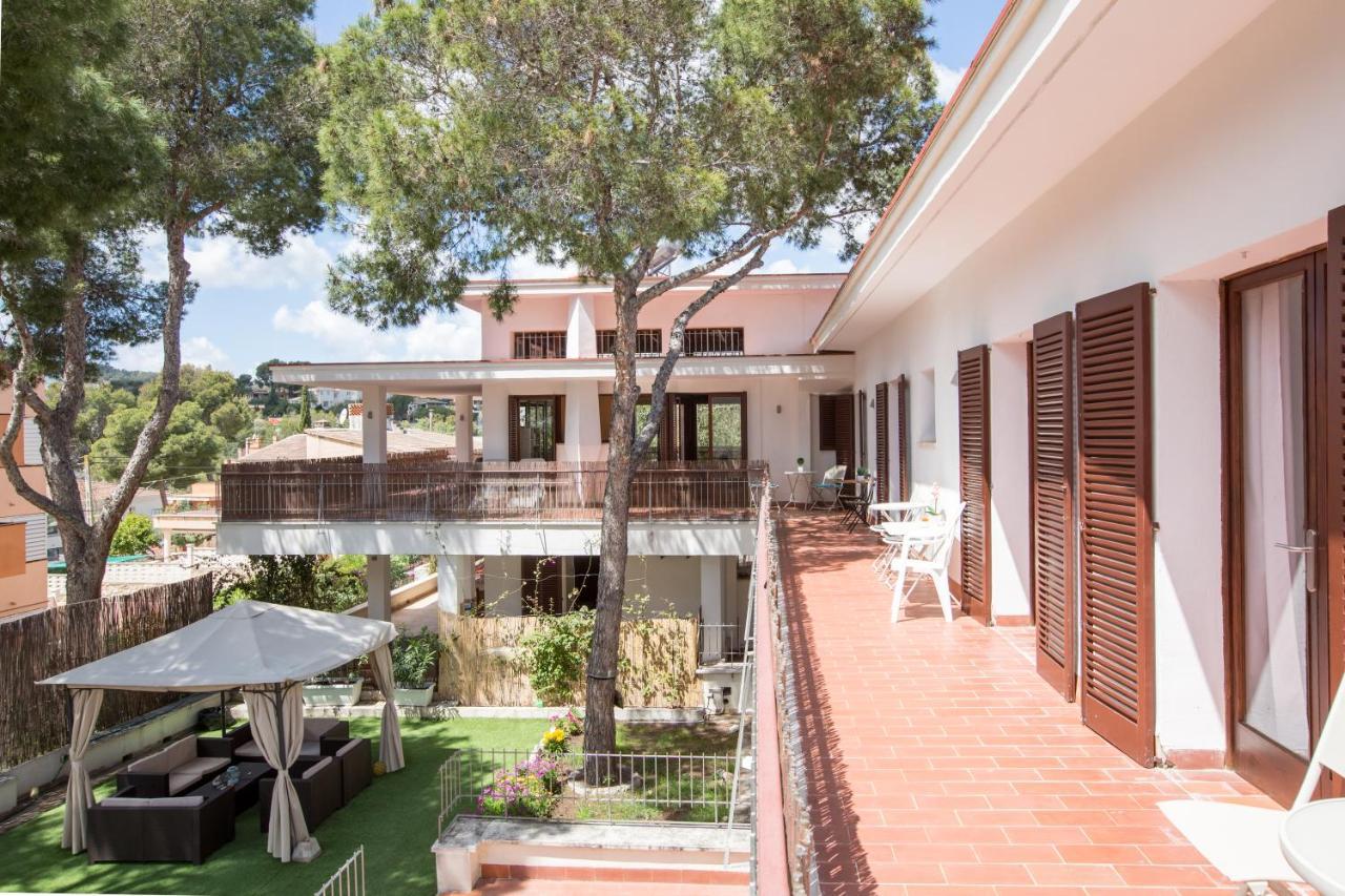 Guest Houses In Palmanova Majorca