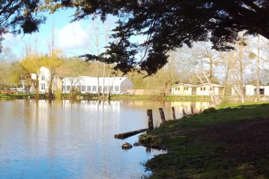 Guest Houses In Saint-andré-goule-d'oie Pays De La Loire