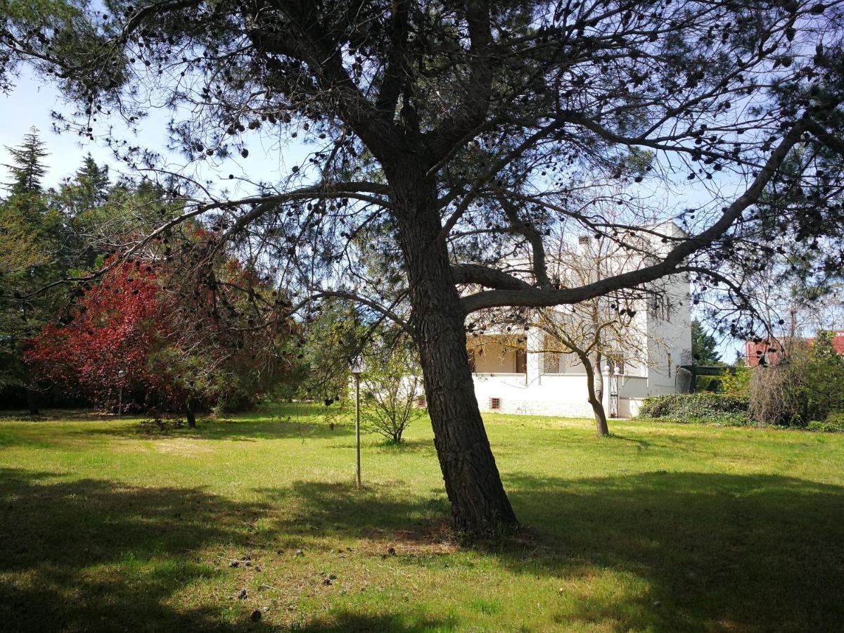Villa Ramolina, Metaponto – Precios actualizados 2019