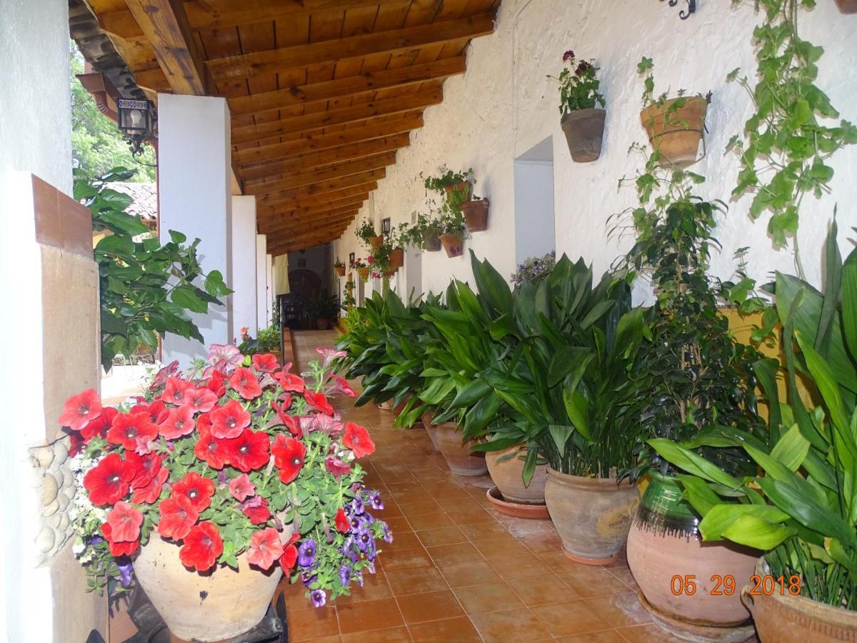 Hotels In Fuente De Las Monjas Andalucía