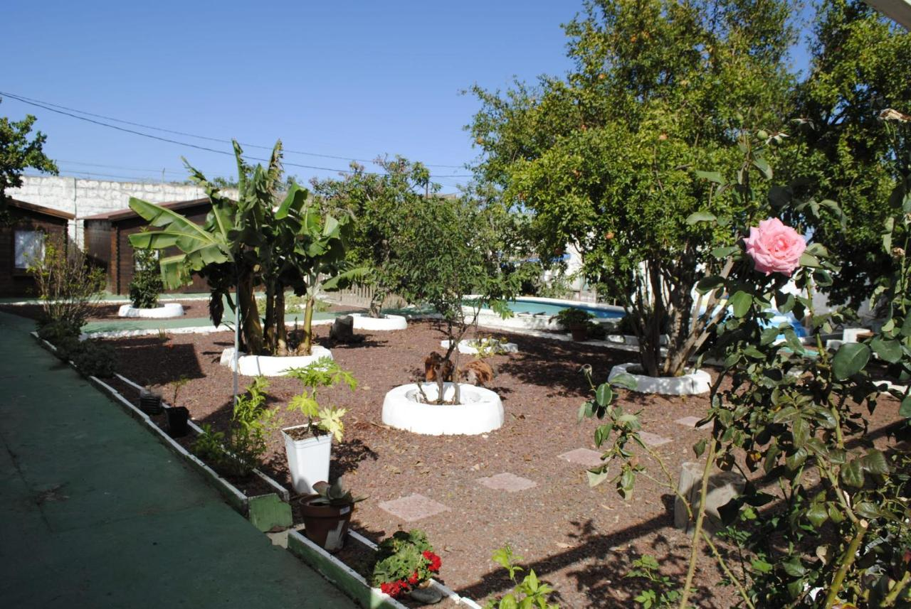 Bed And Breakfasts In Fasnia Tenerife
