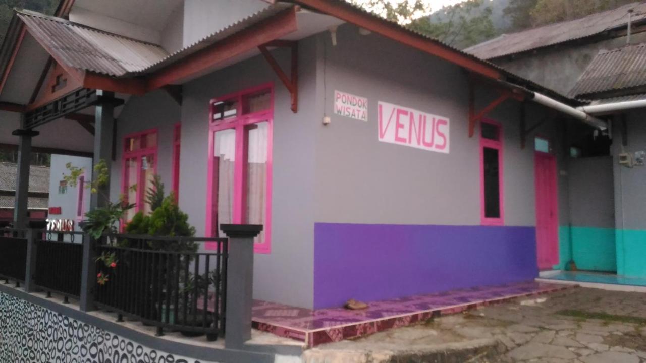 Villa Ruang Tamu Kamar Tidur Dapur Kamar Mandi Tuwel Indonesia