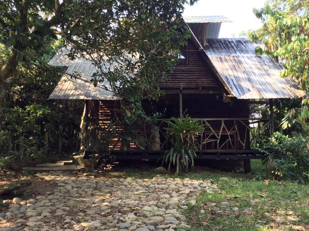 Cabaña amazónica en Tena (Ecuador Tena) - Booking.com