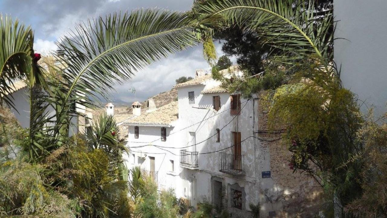 Bed And Breakfasts In Fique Andalucía