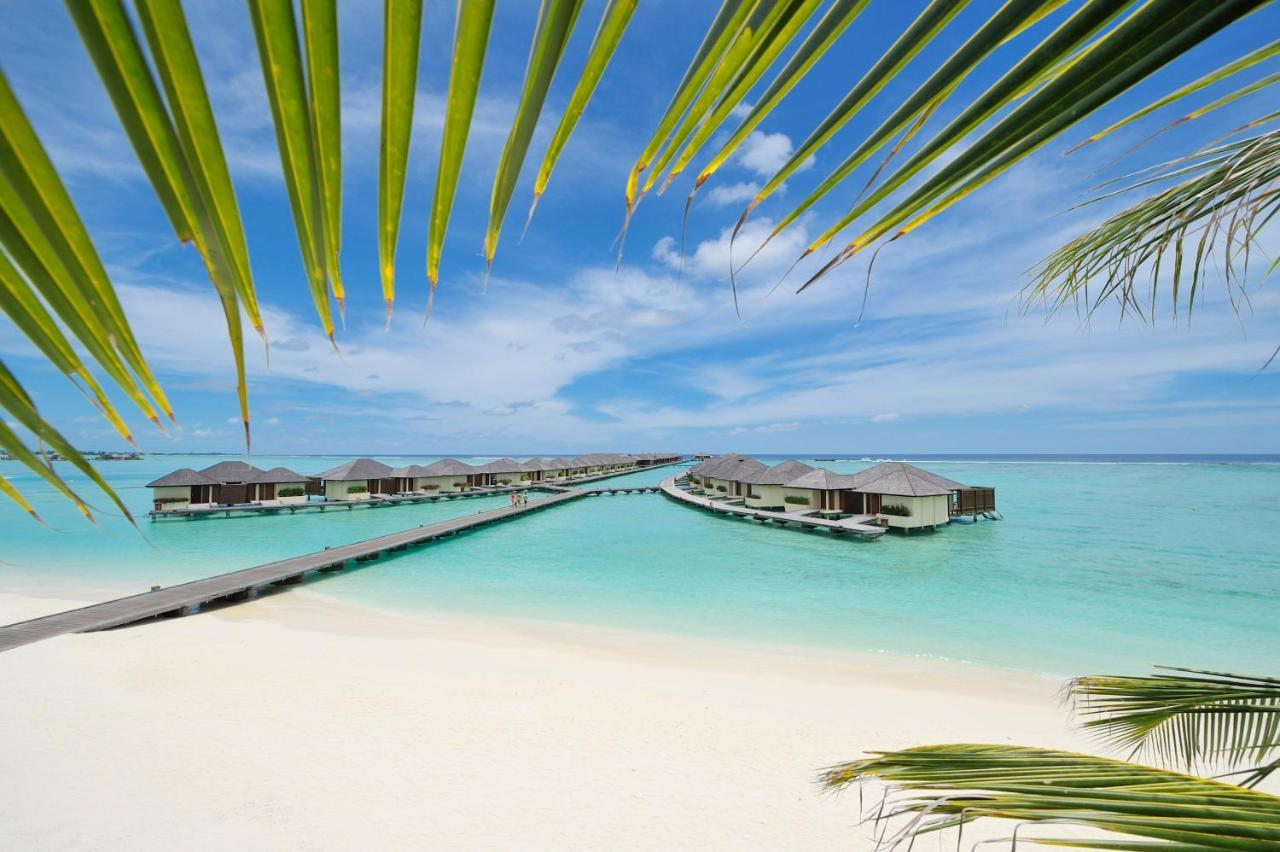 Парадайз Айленд резорт и спа на Мальдивах