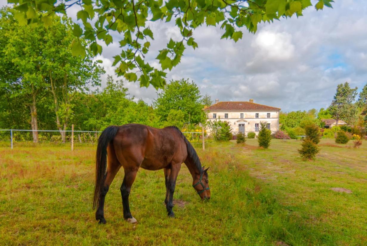 Guest Houses In Saint-laurent-de-la-prée Poitou-charentes