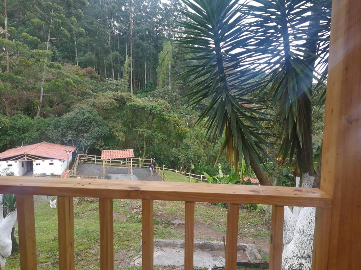 Eco Hotel Bosque Verde Medellin Updated 2019 Prices