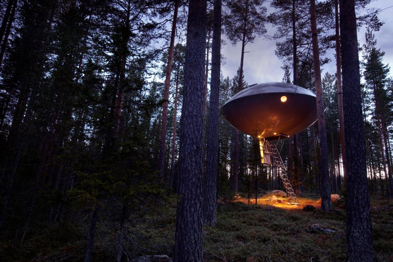 Treehotel Harads Updated 2019 Prices