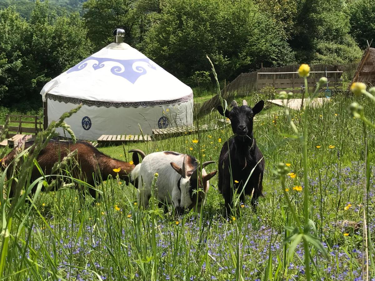 Bed And Breakfasts In Saint-gaudens Midi-pyrénées