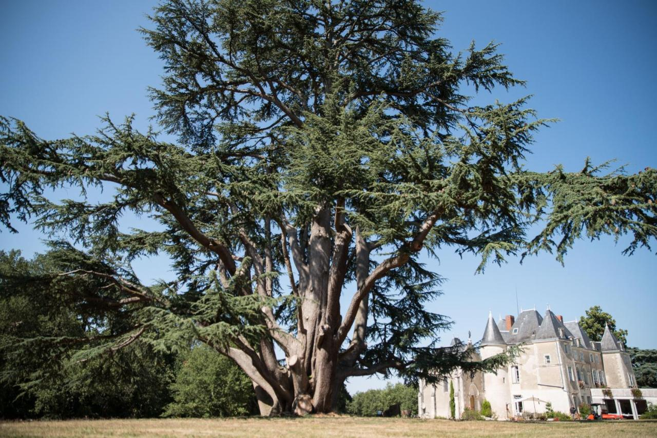 Bed And Breakfasts In Vaux-sur-vienne Poitou-charentes