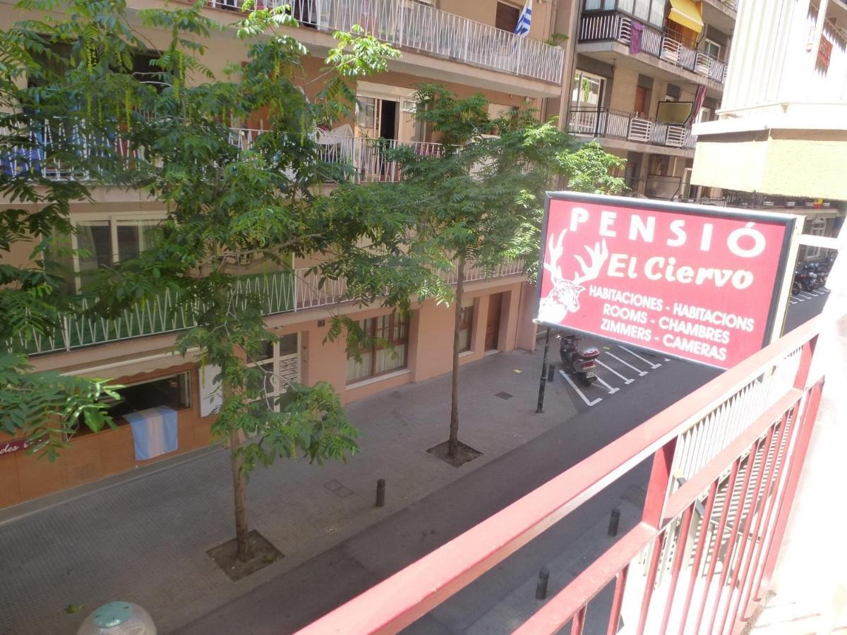 Guest Houses In Lloret De Mar Catalonia