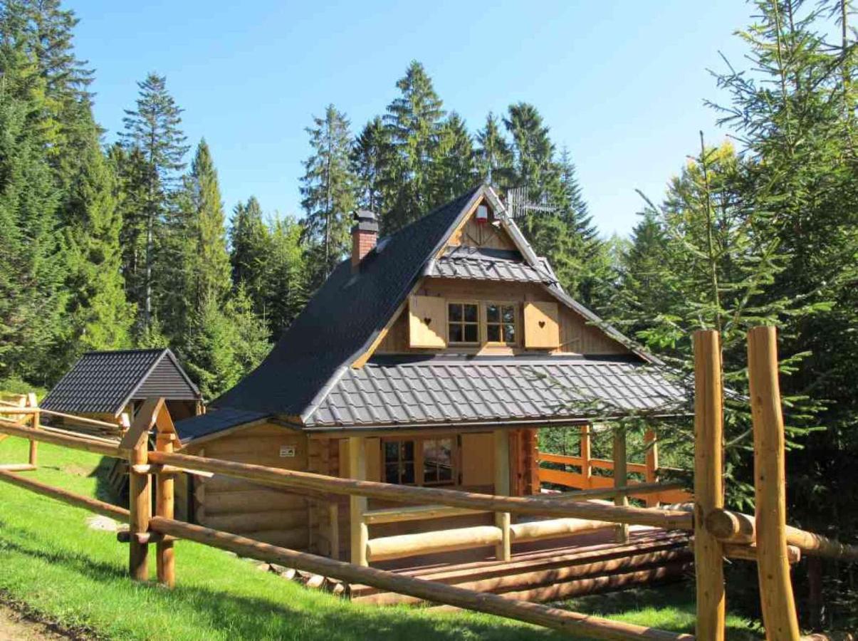 Góra Domek drewniany w górach, Nowy Targ – aktualne ceny na rok 2019 IN65