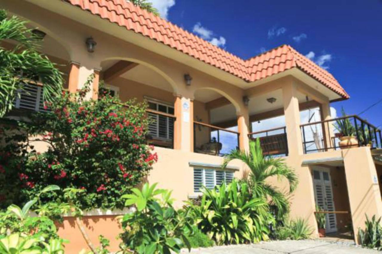 Villa Coral Guesthouse (Puerto Rico Vieques) - Booking.com