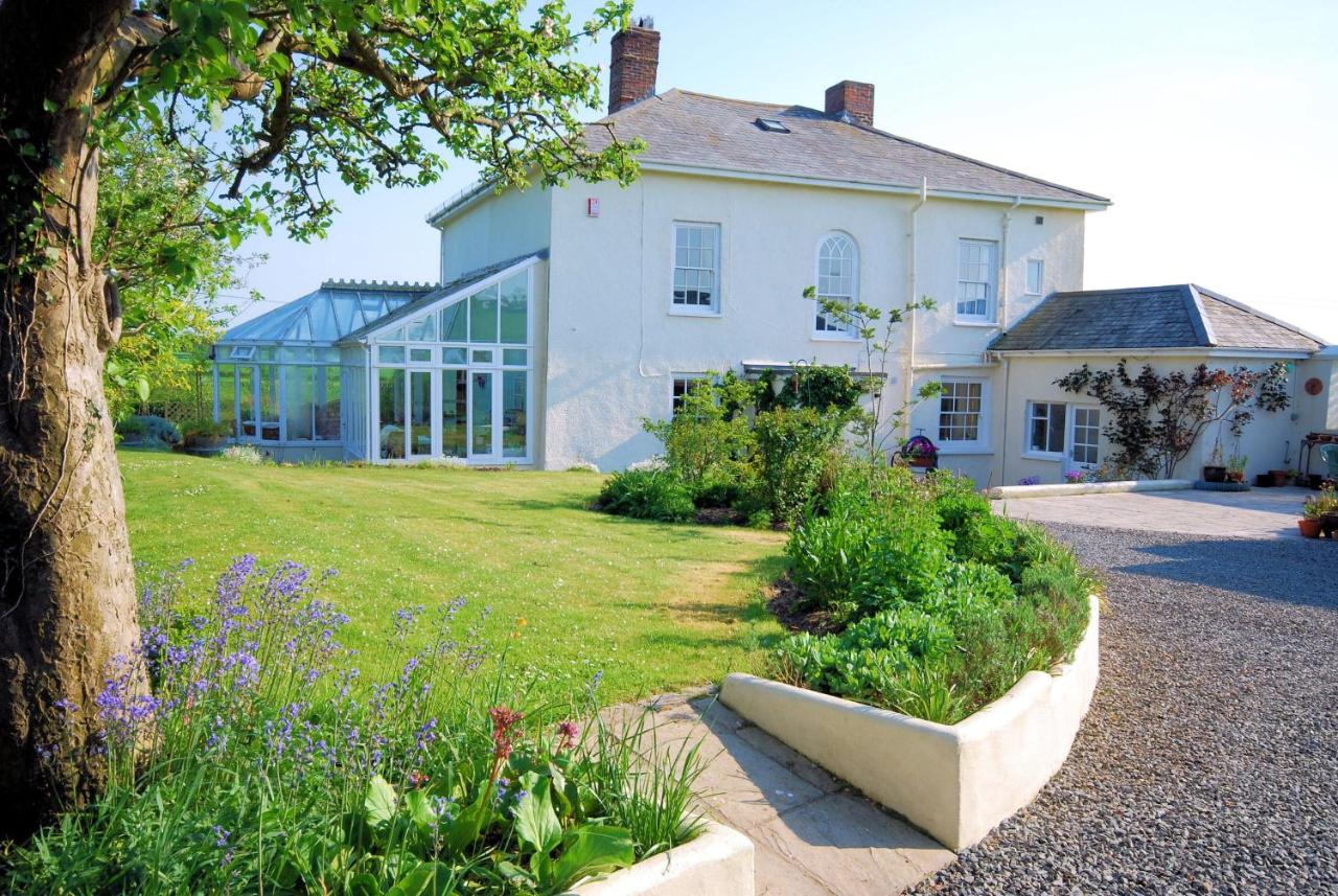 Bed And Breakfasts In Rose Ash Devon