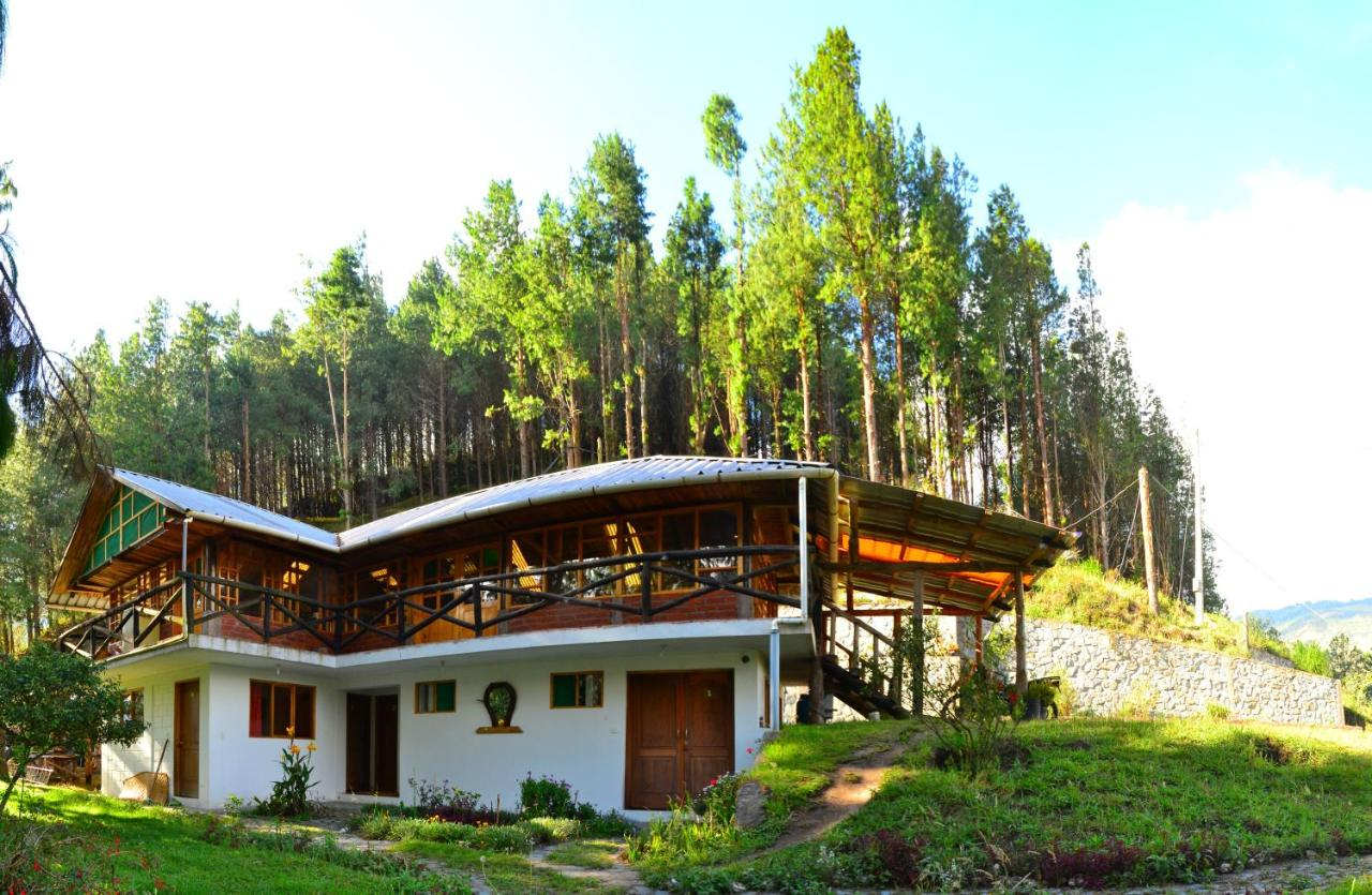 Bed And Breakfasts In Patate