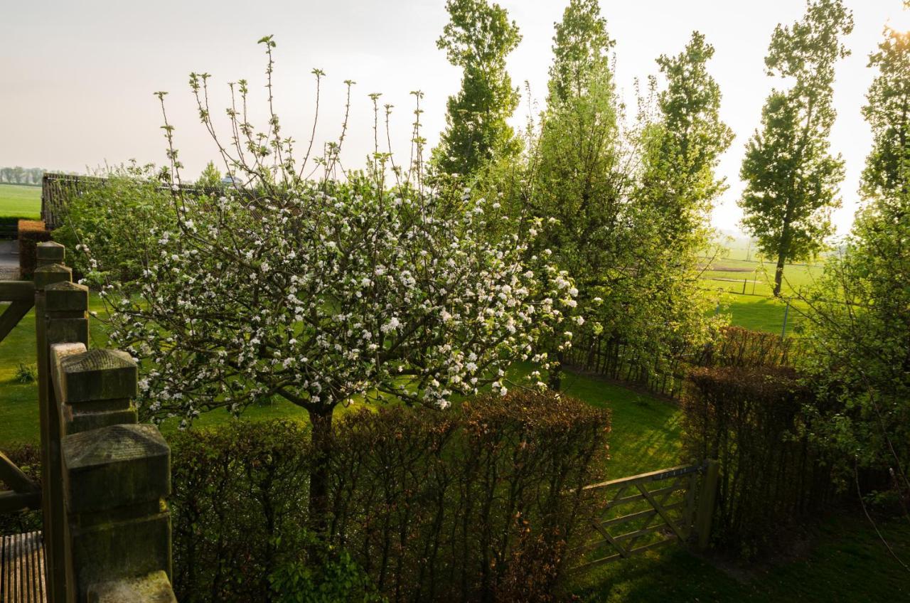 Guest Houses In Alveringem West-flanders