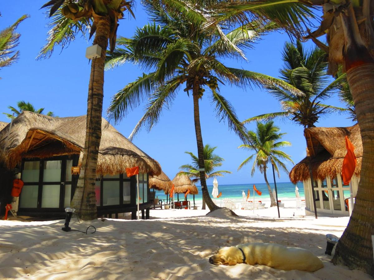 Bed And Breakfasts In Chunyaxché Quintana Roo