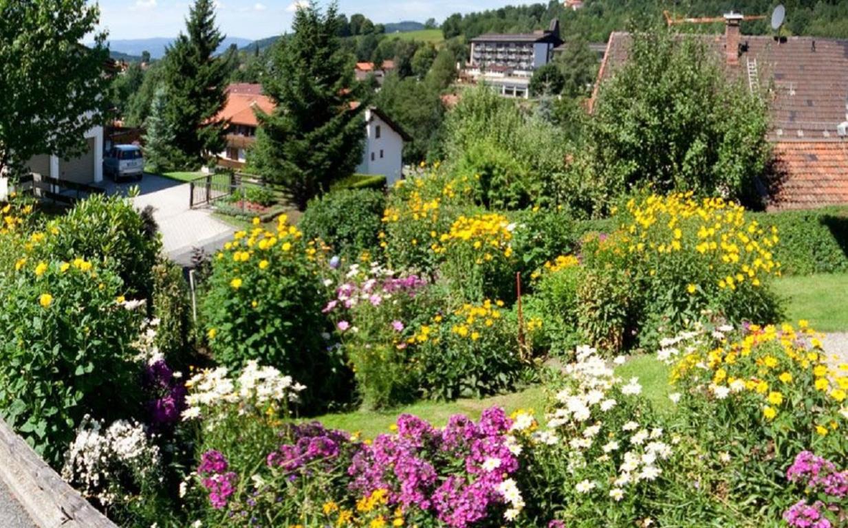 Blumen garten  Apartment Ferienwohnung Am Blumengarten, Bodenmais, Germany ...