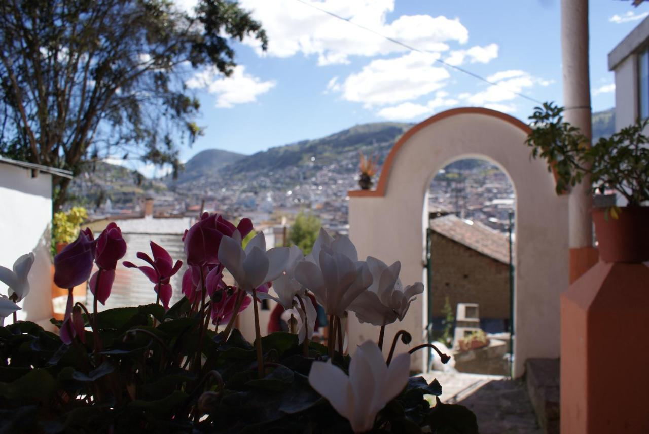 Bed And Breakfasts In Hacienda Caicedo