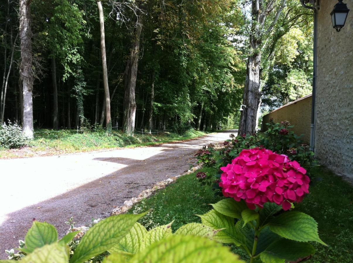 Bed And Breakfasts In Villers-allerand Champagne - Ardenne