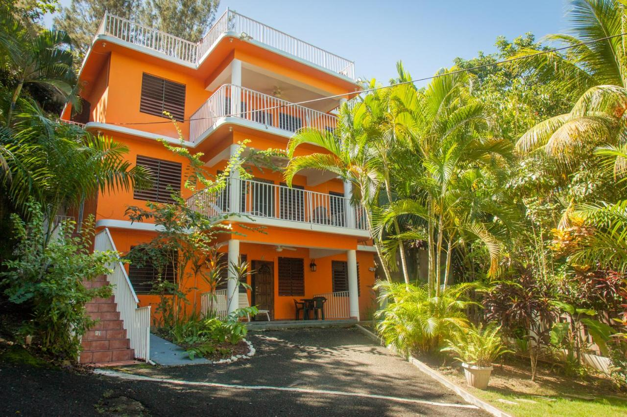 Guest Houses In Tamarindo