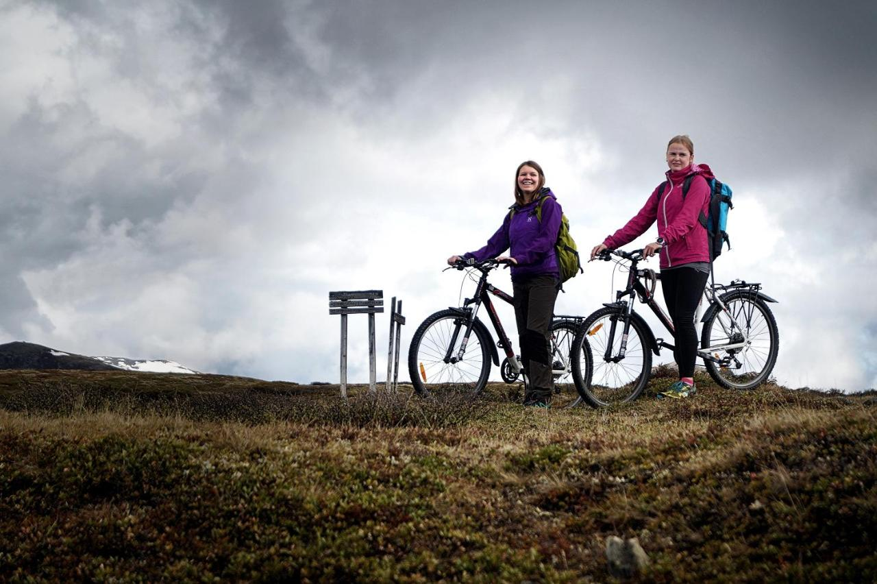 fun bike billeder nordic rengøring