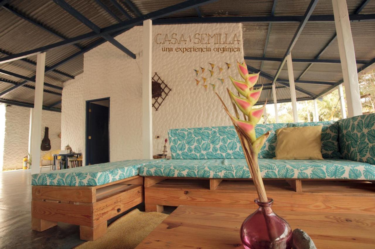 Hostels In Palomino Guajira