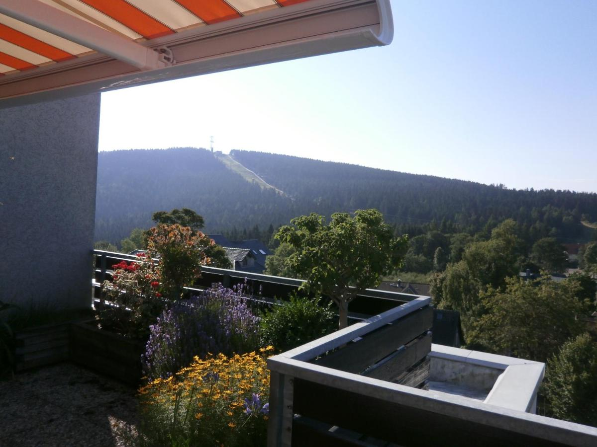 Penthaus Hannover penthouse fliege hahnenklee bockswiese updated 2018 prices