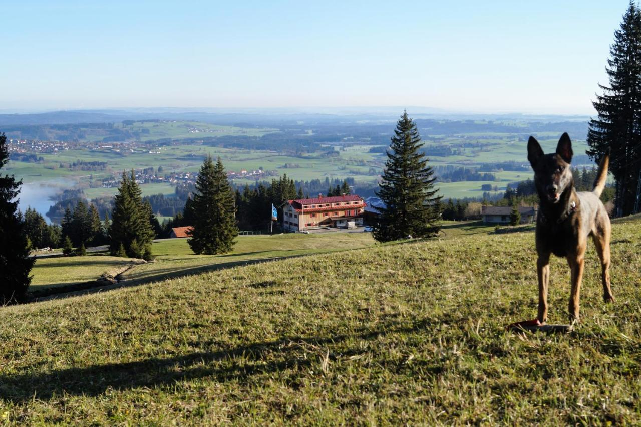 Hostel Buronhutte Wertach Germany Booking Com