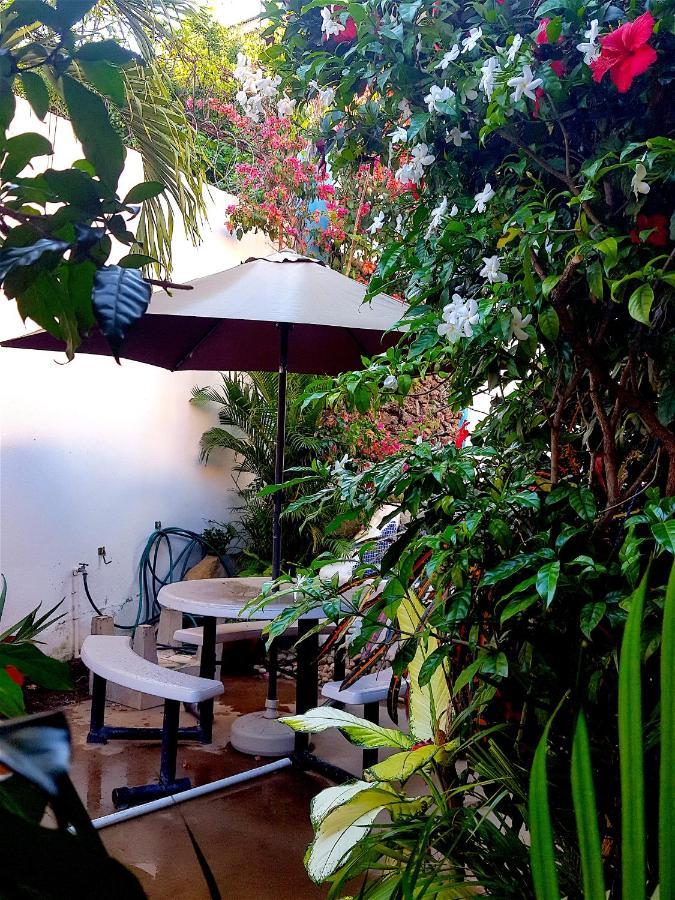 moke huhu guesthouse san juan del sur nicaragua booking