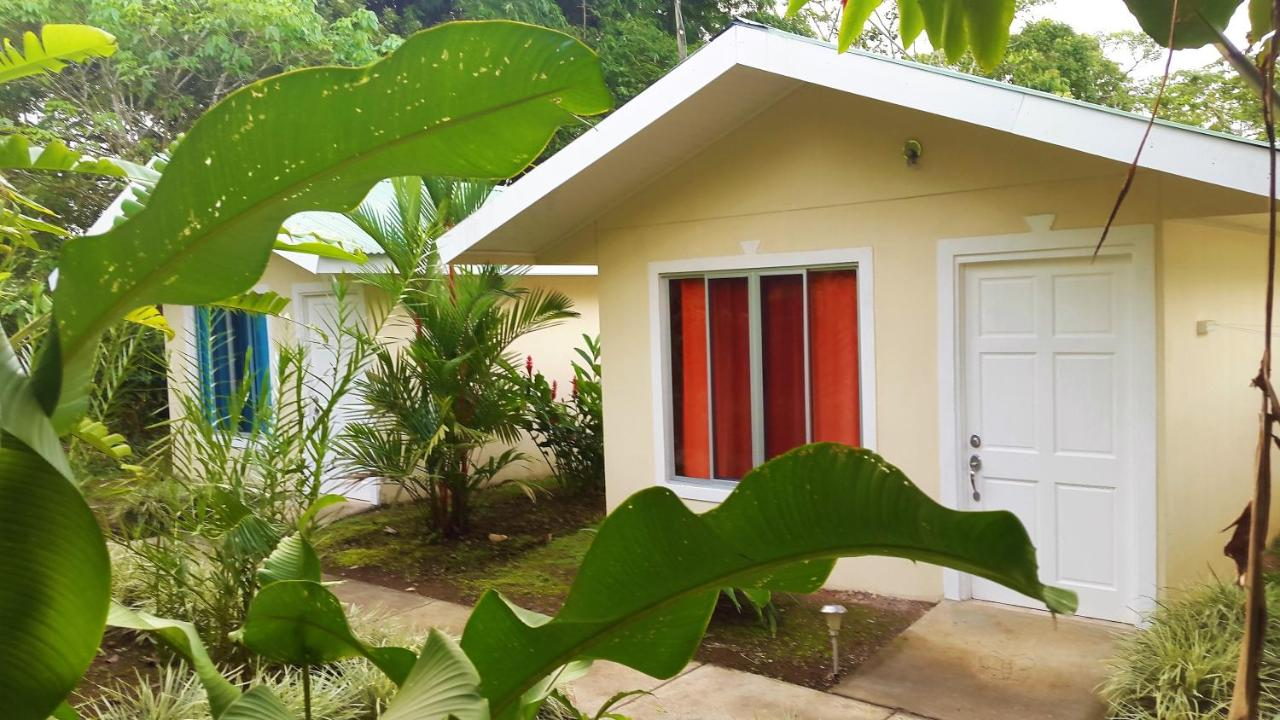 Guest Houses In Colonia Alajuela