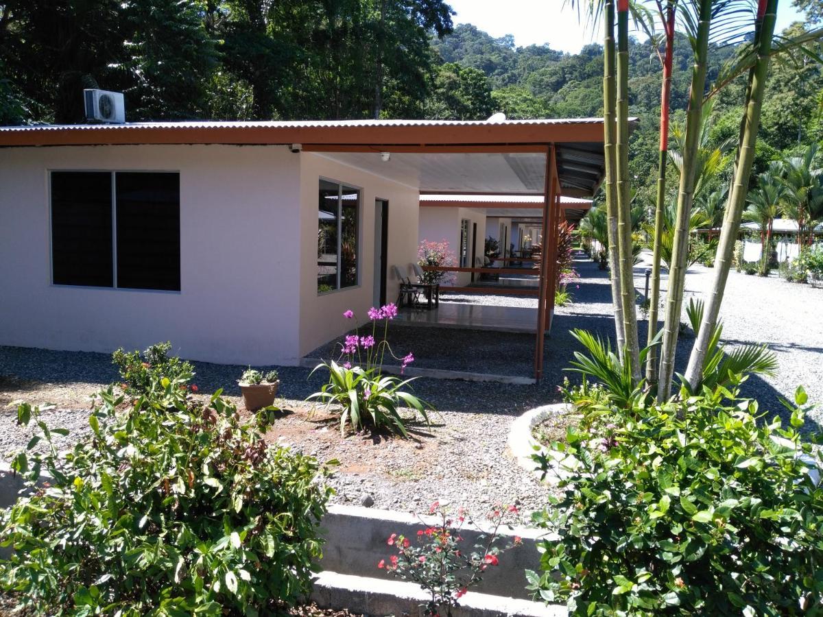 Hotels In Cahuita Limon